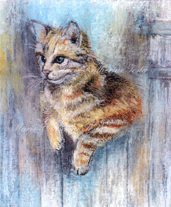 Chat - Pastel - Marie-Catherine Testa
